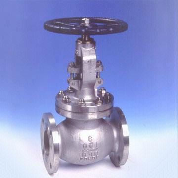 Stainless Steel Globe Valve, 1/2-24 Inch, BW